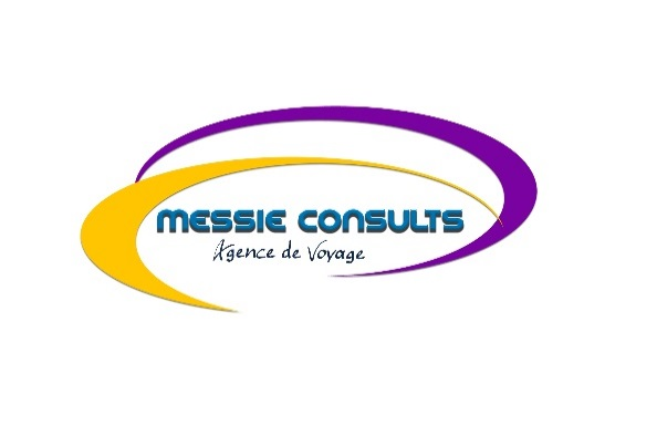 Messie Consults
